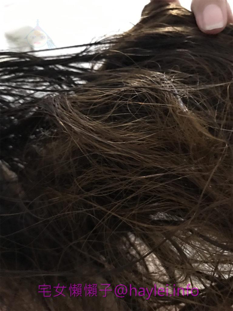 haircare/shampoo-Syoss/絲蘊無矽靈去屑洗髮乳-頭皮清爽、頭髮輕盈,舒爽的洗髮感受,讓頭部都放鬆了許多!夏天洗髮推薦 保養品分享 健康養身 攝影 民生資訊分享 美髮相關
