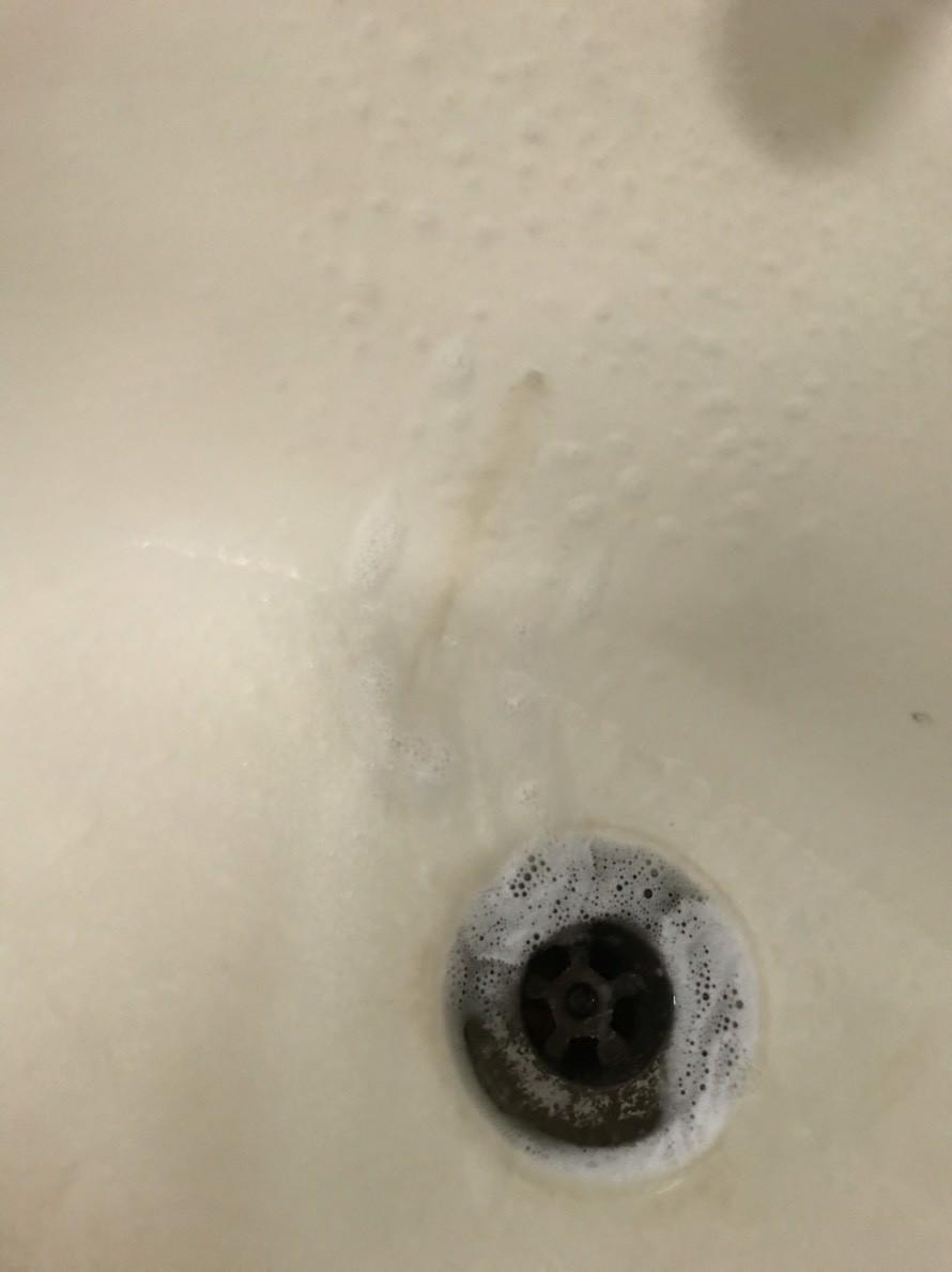 歐瀅酵素浴廁清潔劑-酵素潔淨,微等五分鐘更好清!歐瀅Oing/居家清潔/浴室/廁所/衛生/清潔劑 健康養身 國內外住宿相關 攝影 民生資訊分享